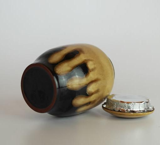 glazed_canisterii