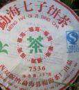 07 Fuhai 7536IV